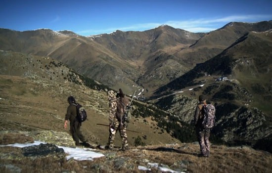 Dennis Hunting in the Pyrenees